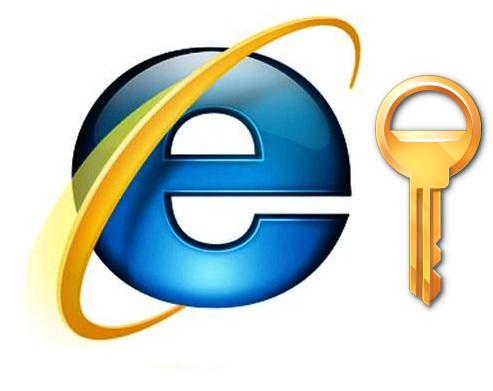 Experta en seguridad recomienda Internet Explorer 8 » MuyPymes