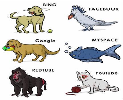 serviciosweb_animales