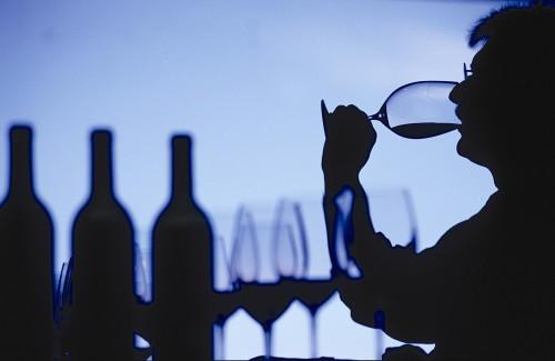 vitivinícola muypymes
