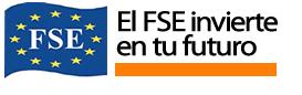 fse logo Cursos Plan Avanza 2011, ¡Consigue tu plaza gratis!