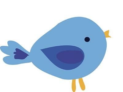 ¿Es rentable pagar por tener una página de empresa en Twitter?