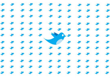 twitter_seguidor
