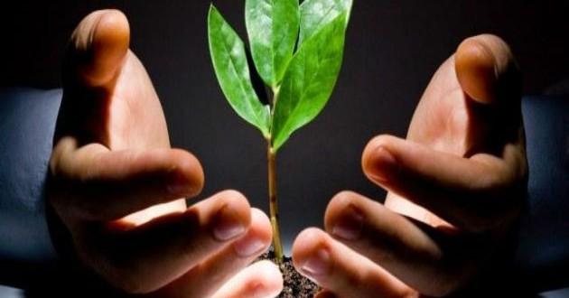 Elige el mejor sector para fundar tu start up