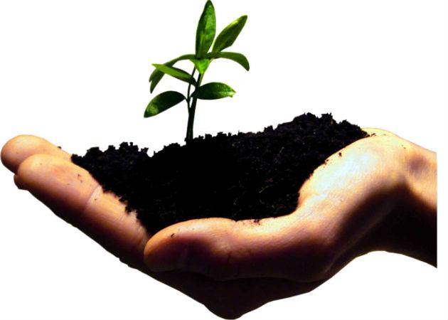 Co-emprender, la primera red de emprendedores rurales sostenibles