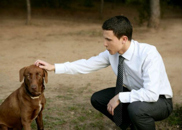 Algunas lecciones de negocio que puedes aprender de tu perro