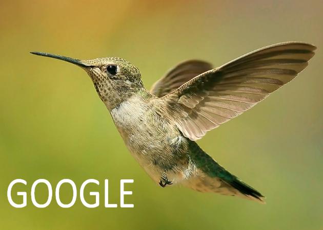 Cómo nos afecta Colibrí, el nuevo algoritmo de Google
