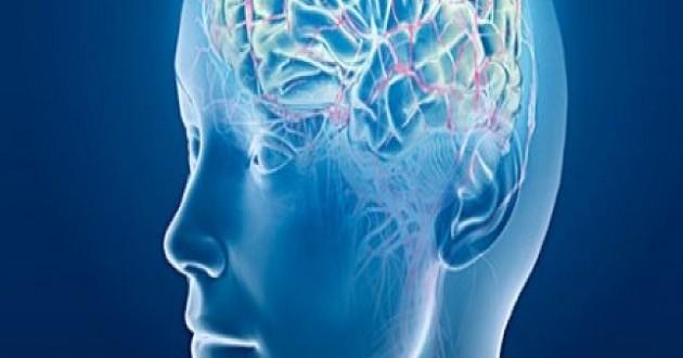 Entrena tu cerebro para estar más concentrado en el trabajo