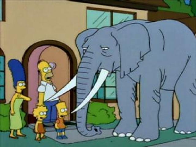 homer-simpson-elefante