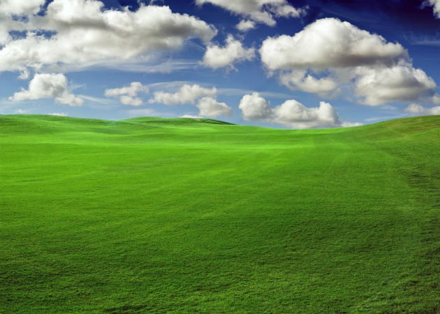 ¿Cómo migrar tus datos desde Windows XP?