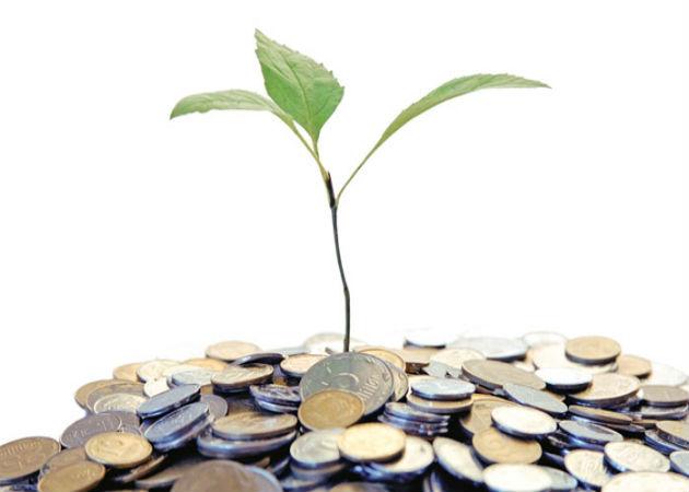 Daruan, nuevo fondo para startups con tecnologías verdes