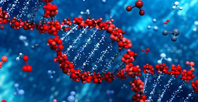 dna-genome