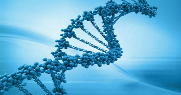 El ADN del emprendedor