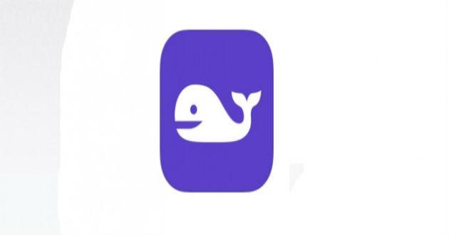 La aplicación Namewhale te ayudará a ponerle nombre a tu startup
