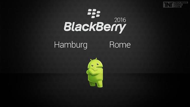 blackberry_rome_hamburg