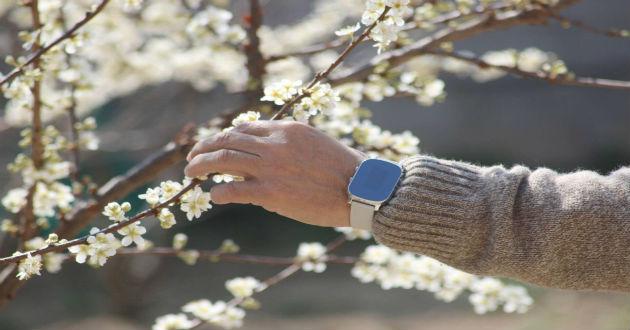 Nock Senior, el reloj de los mayores