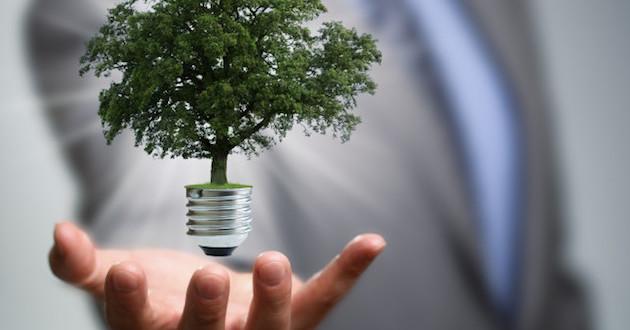 pymes y ecologia medio ambiente