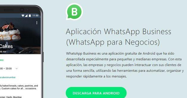 Llega WhatsApp Business; todo lo que debes saber