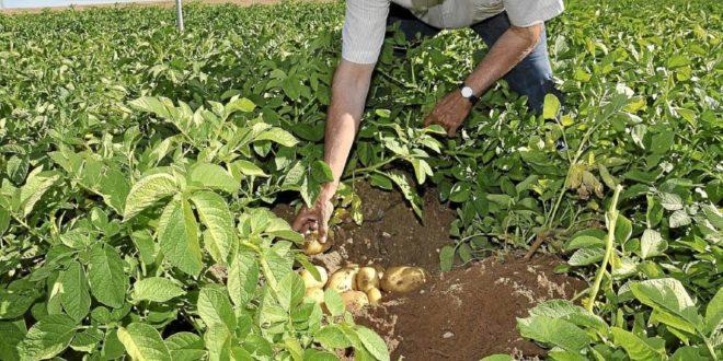 Agroalimentación