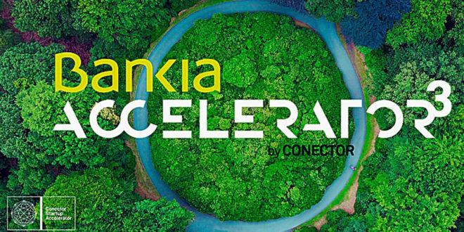 Bankia Accelerator