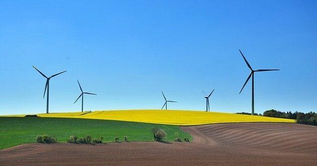 El desarrollo sostenible, ¿cómo convertirlo en una oportunidad de negocio?