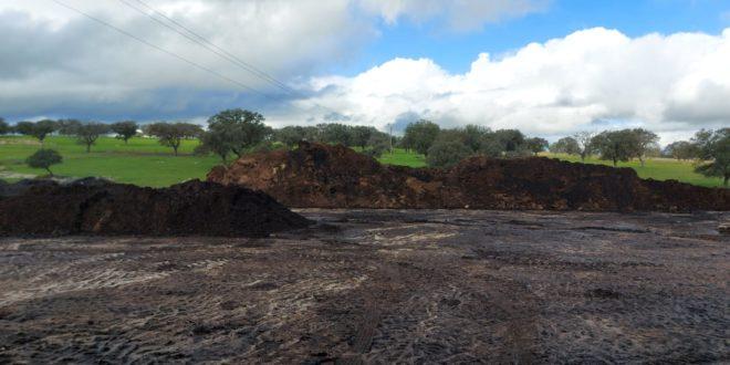 La provincia de Cáceres inaugura la mayor explotación de lombricultura de Europa